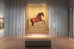 Exhibition George Stubbs, Mauritshuis The Hague